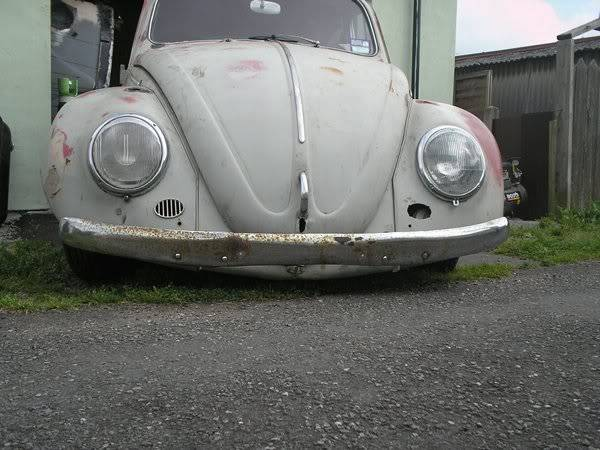 Bella - 1958 Australian Beetle 2368a43a