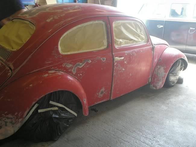 Bella - 1958 Australian Beetle P1010001hy