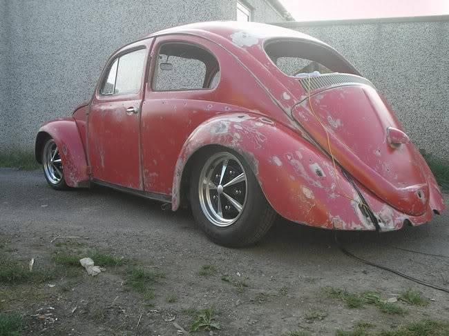 Bella - 1958 Australian Beetle P1010008hy