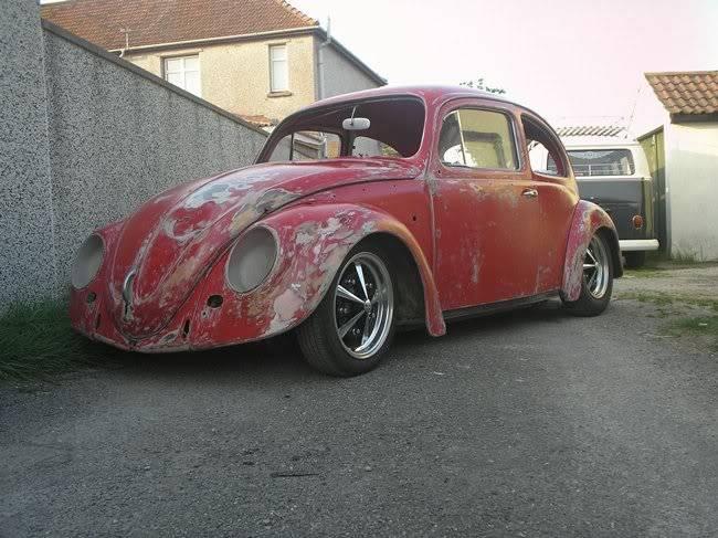Bella - 1958 Australian Beetle P1010009hy