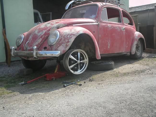 Bella - 1958 Australian Beetle P1010048rs