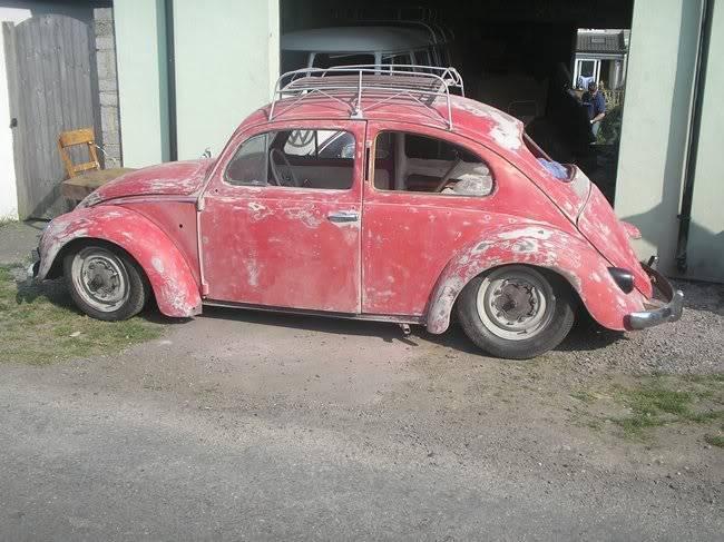 Bella - 1958 Australian Beetle P1010052rs
