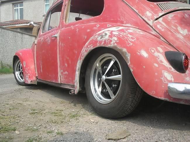 Bella - 1958 Australian Beetle P1010083gr