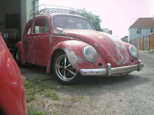 Bella - 1958 Australian Beetle P1010084gr