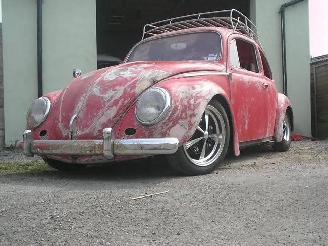 Bella - 1958 Australian Beetle P1010094gr