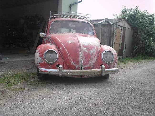 Bella - 1958 Australian Beetle P1010099gr