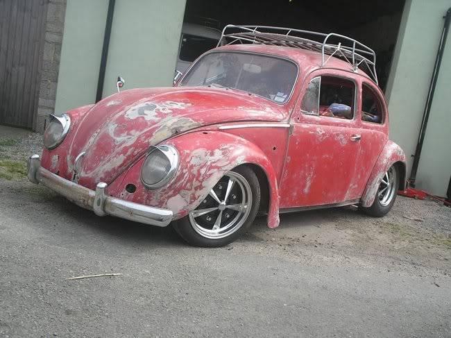 Bella - 1958 Australian Beetle P1010106gr