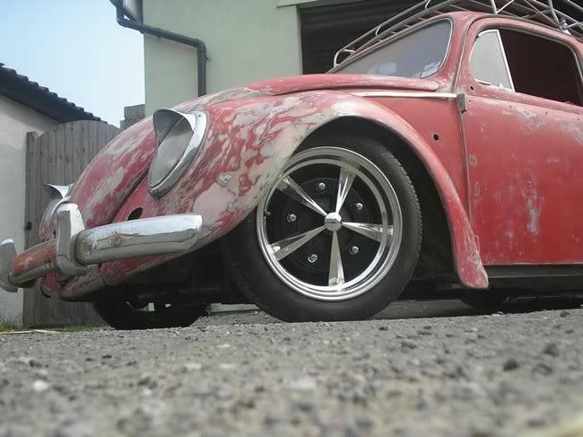 Bella - 1958 Australian Beetle P1010111gr