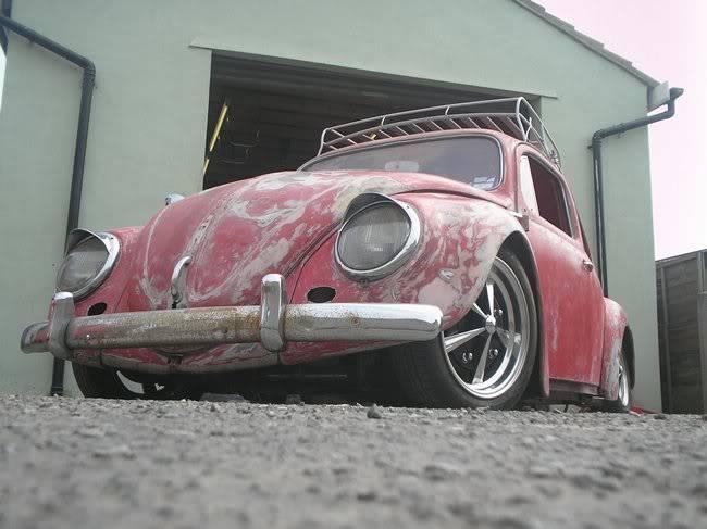 Bella - 1958 Australian Beetle P1010115gr