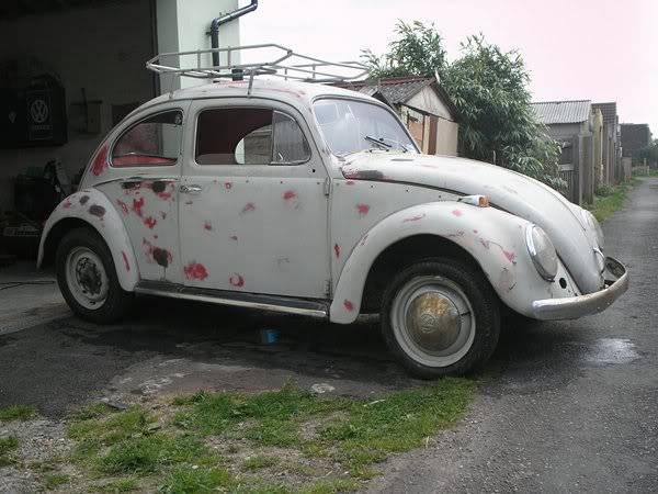 Bella - 1958 Australian Beetle C2ed018c