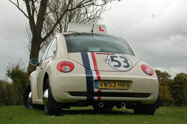 Herbie DSC_0049_rs