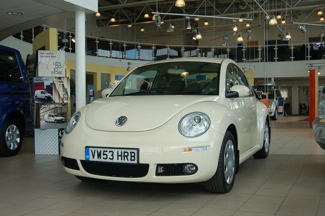 Herbie DSC_0162yu-1