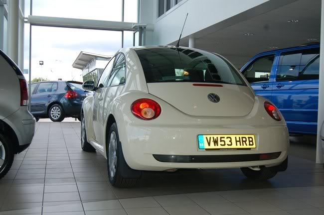 Herbie DSC_0164yu