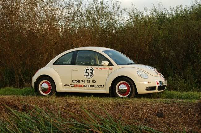 Herbie - Page 2 DSC_0261ds