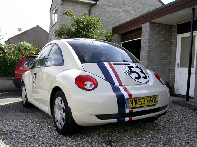Herbie PIC_0295yu