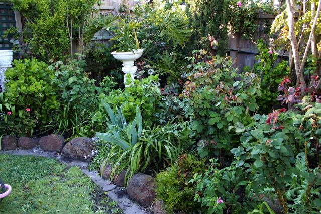 How Important is Attractiveness to Your Garden, on a scale of one to ten 2010_10_02_0696
