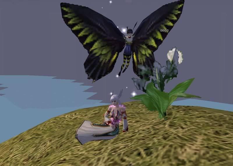 Maharet's Dungeon 2008-02-2209-10-22