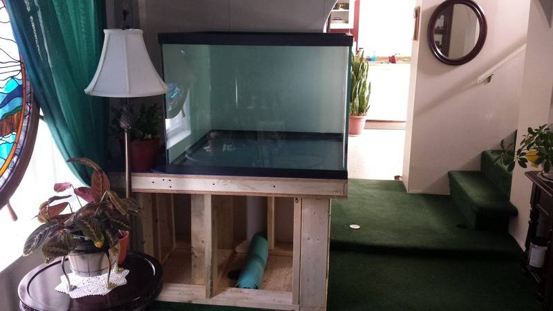 My 150 gallon project... 20170128_120656%202