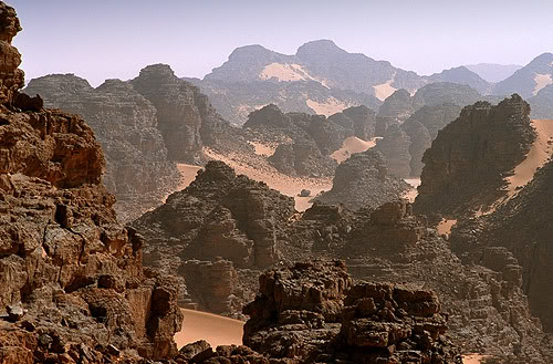جولة في بلدى الجزائر 023