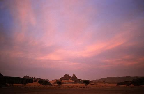 جولة في بلدى الجزائر 033