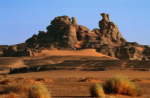 جولة في بلدى الجزائر 038