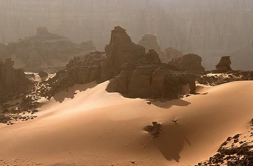 جولة في بلدى الجزائر 043