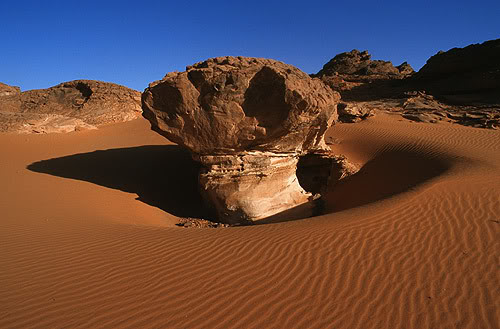 جولة في بلدى الجزائر 115
