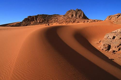 جولة في بلدى الجزائر 172-1