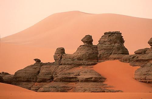 جولة في بلدى الجزائر 58