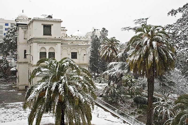 صور لبلادي الجزائر وهي مغطات بالثلوج Dz1