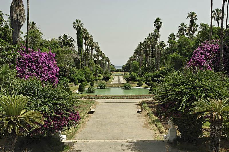 من اجمل الحدائق في الجزائر Dz17