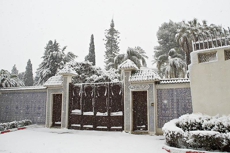 صور لبلادي الجزائر وهي مغطات بالثلوج Dz2
