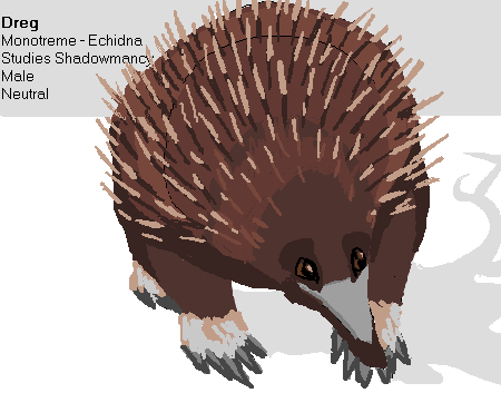 Let's Create Characters Using The Inspiration Pad! Echidna