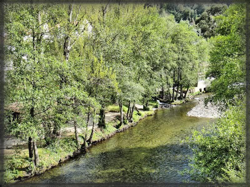 Pelas Beiras ou Padeiros na prancha (09/04/2011)... DSC04505_14