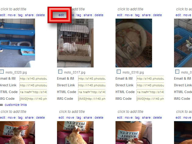 Image Sizes & Content Acceptability PBsize1