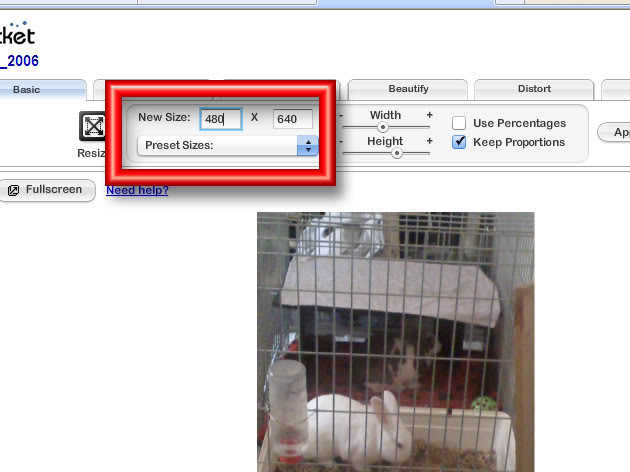 Image Sizes & Content Acceptability PBsize3