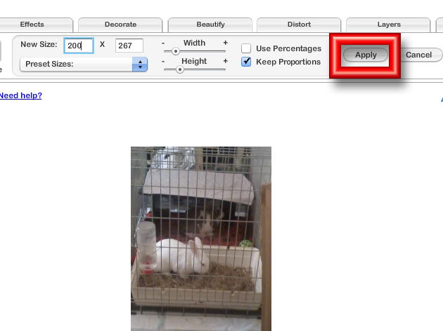 Image Sizes & Content Acceptability PBsize4