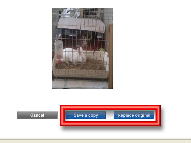 Image Sizes & Content Acceptability PBsize5