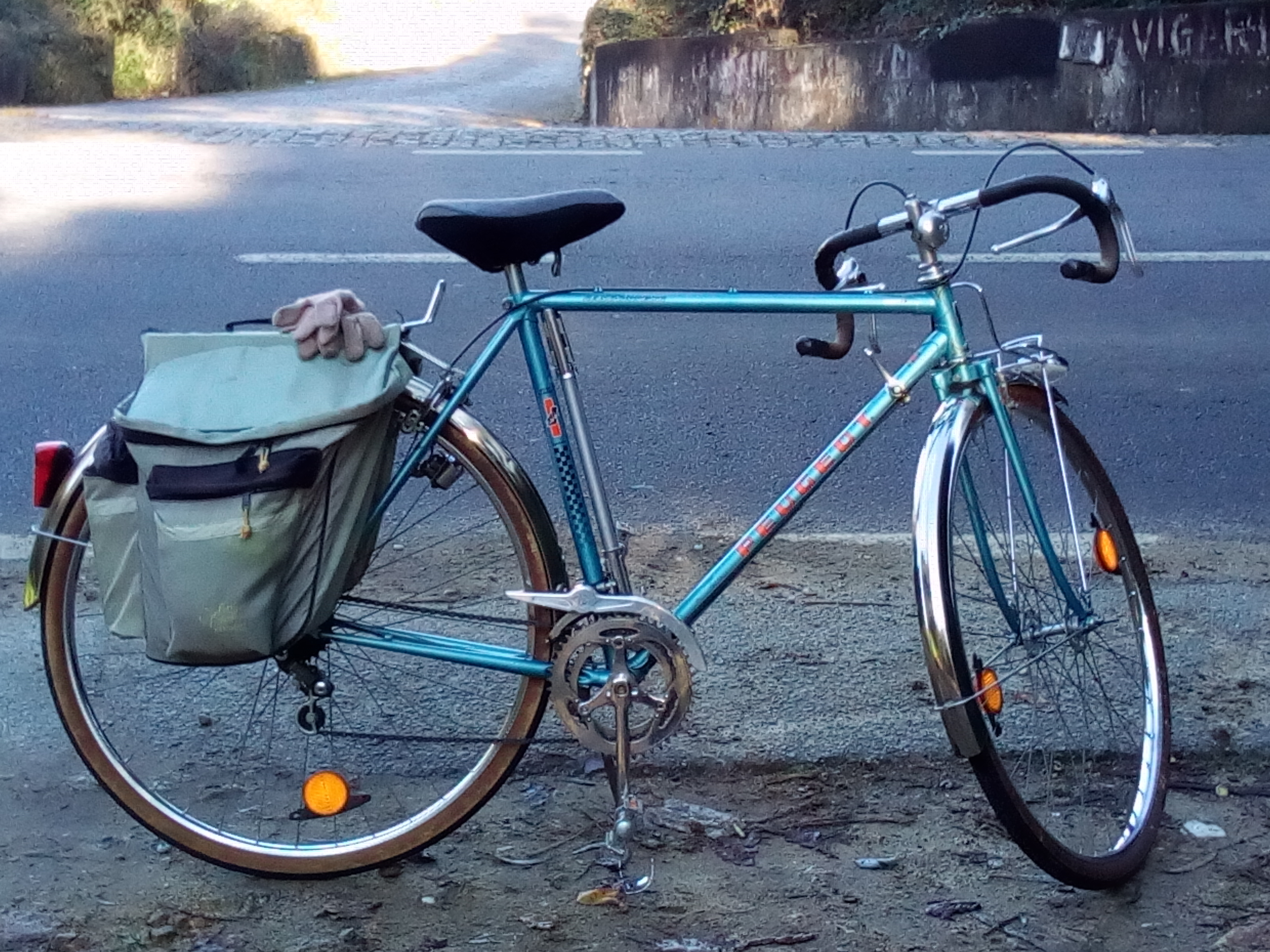 As minhas bicicletas IMG_20170108_120633