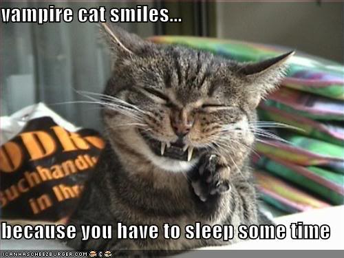 Hallo - Bonjour Funny-pictures-happy-vampire-cat