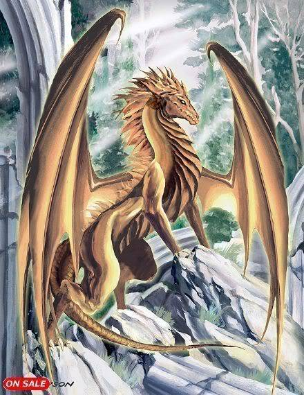 Dragons Avi Lor