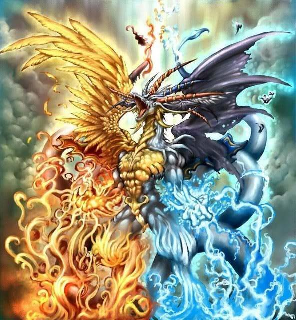 Dragons Avi Dragonguard