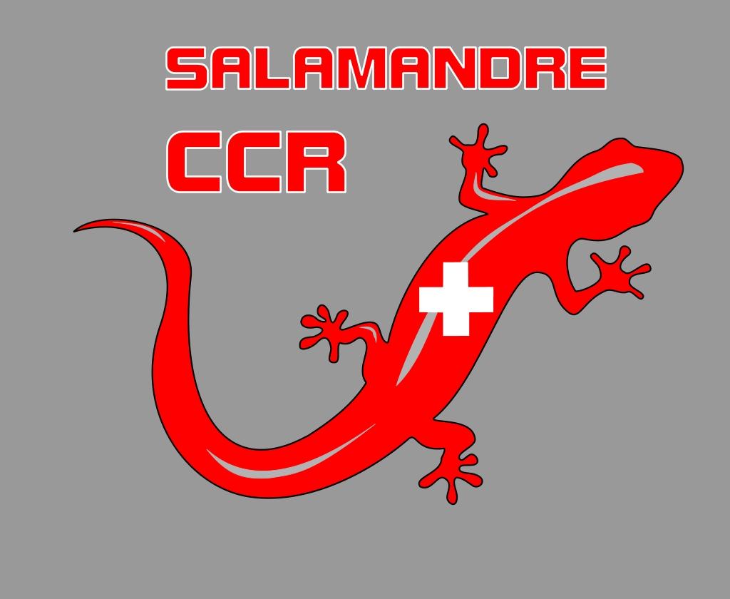 projet SALAMANDRA Lswissalamandre_zpse7244026