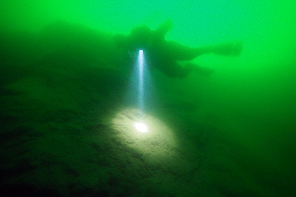 de retour dans nos eaux vertes Rouse03_zpse93778f7