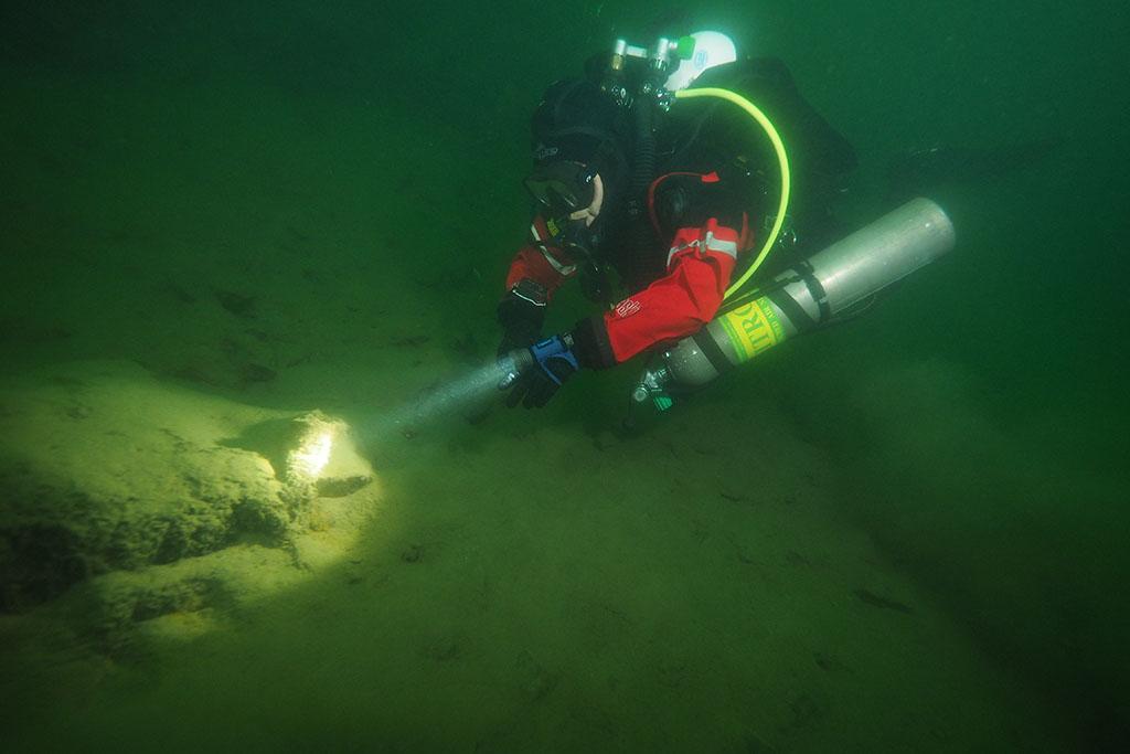 de retour dans nos eaux vertes Rouse04_zps61c37ca1