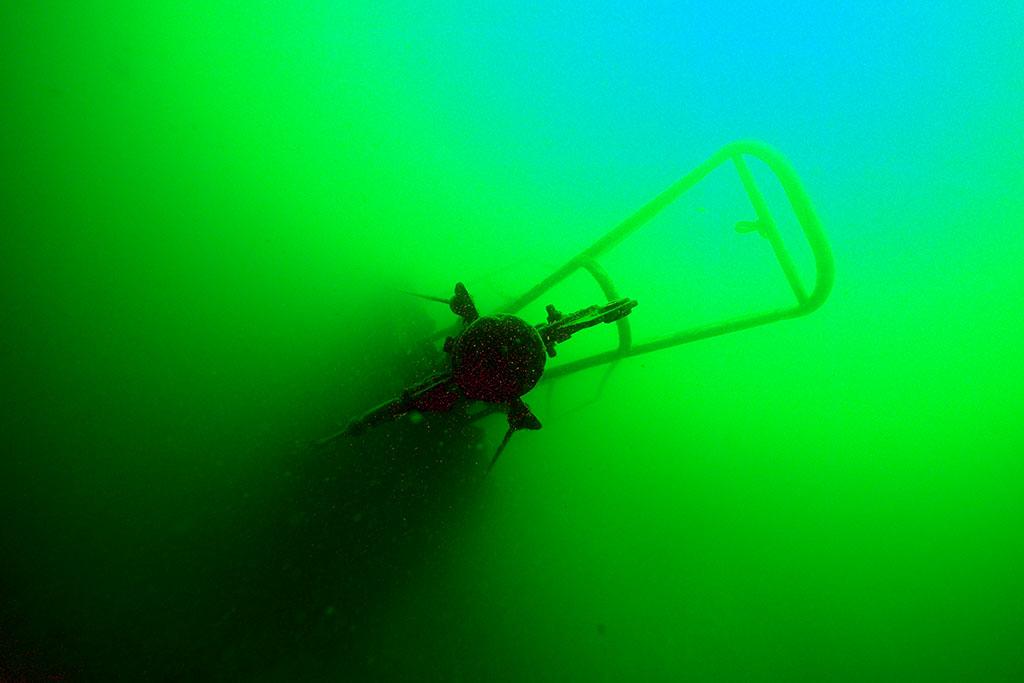 de retour dans nos eaux vertes Rouse13_zps3cc85f8b