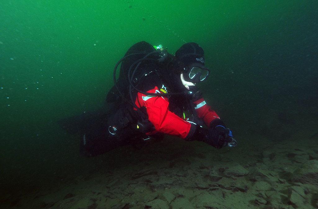 de retour dans nos eaux vertes Rouse14_zpsc5d9b544