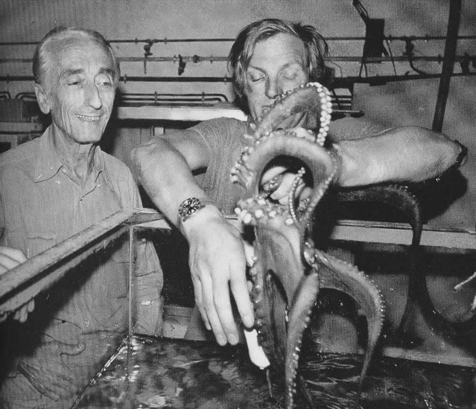 """quelles sont ces montres de l'épopée """"Cousteau"""".. Cousteauocto"""