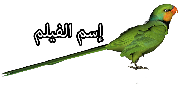 Epic مدبلج عربي Green_Parrot_PNG_Clipart_Picture