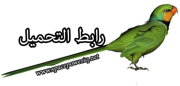 Epic مدبلج عربي Green_Parrot_PNG_Clipart_Picture3